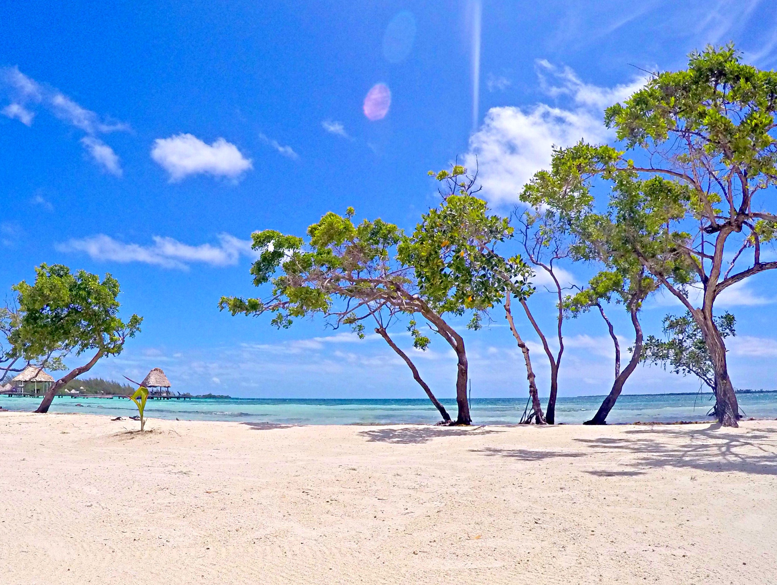 All Inclusive Private Island Paradise