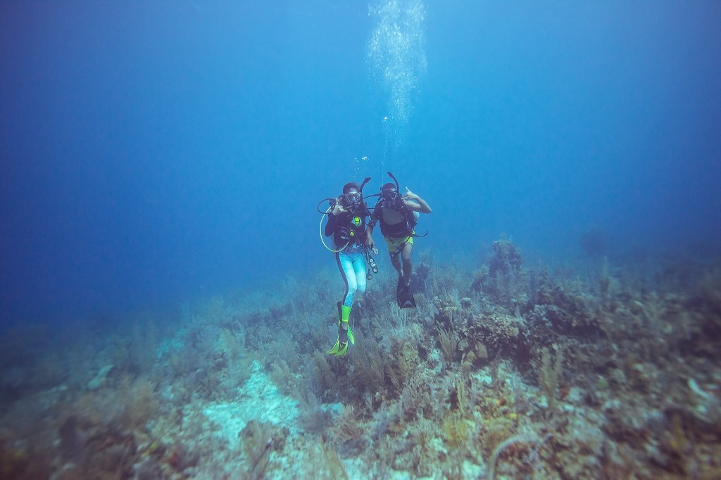 Diving along the Belize Barrier Reef!