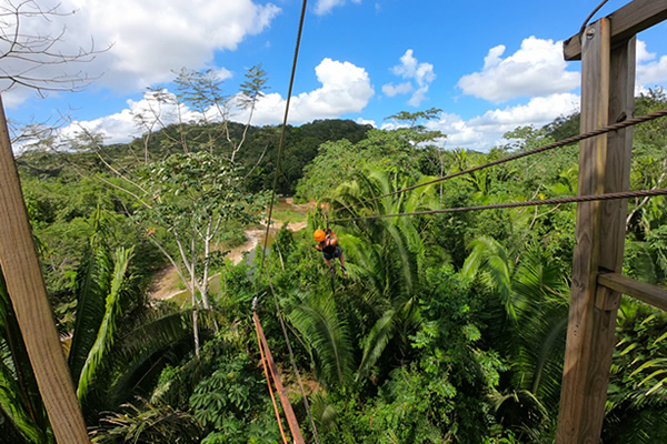 belize jungle vacations