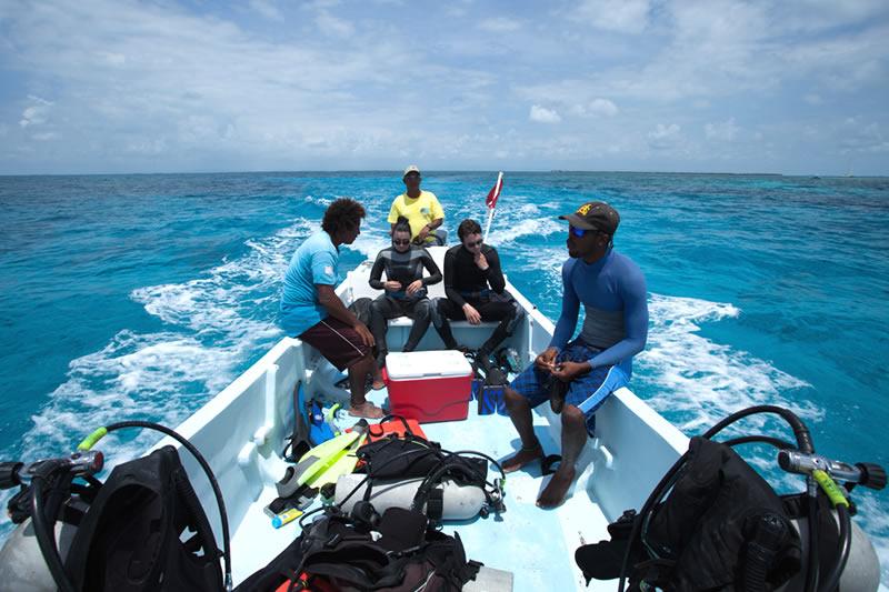 scuba diving belize trips