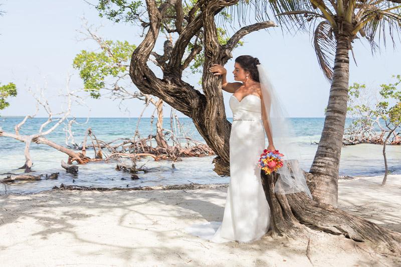 All Inclusive Weddings and Honeymoons